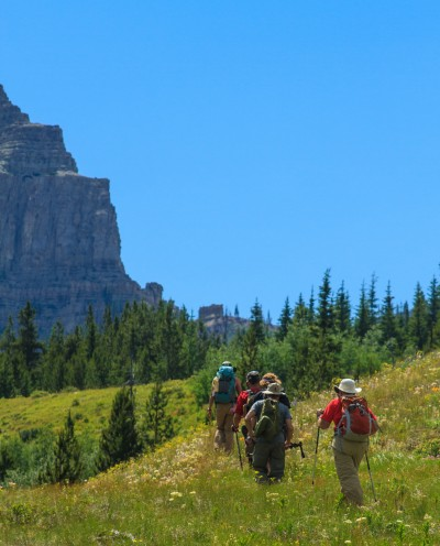 Hiking in the Bob Marshall Wilderness through a meadow
