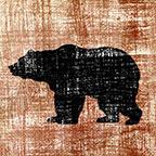 Bear Saftey